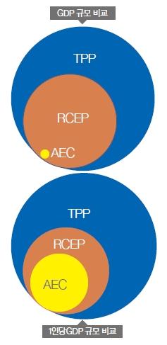 TPP1.jpg