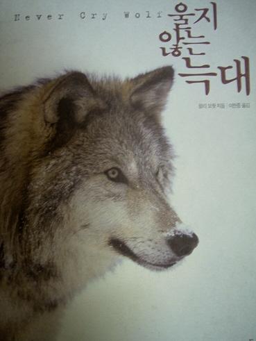 늑대.jpg