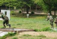 동원전력 정예화와 예비군 훈련의 변화